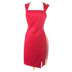 David Meister Fuchsia Designer Dress (size 10)